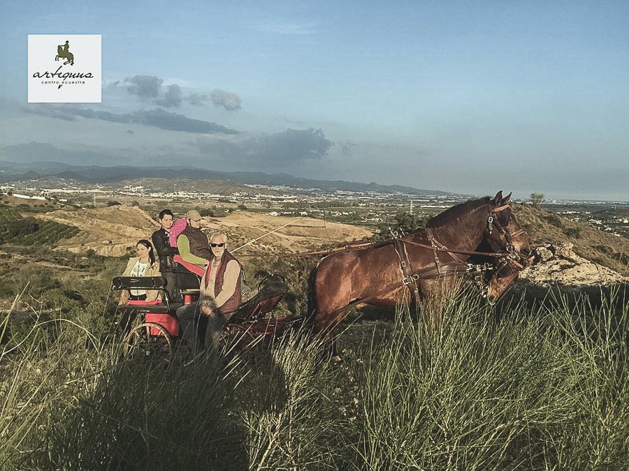 Paseo al atardecer en coche a caballo