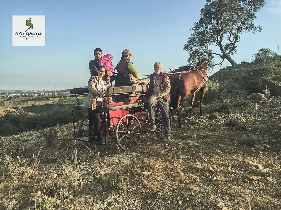 Pasear con caballos por el campo