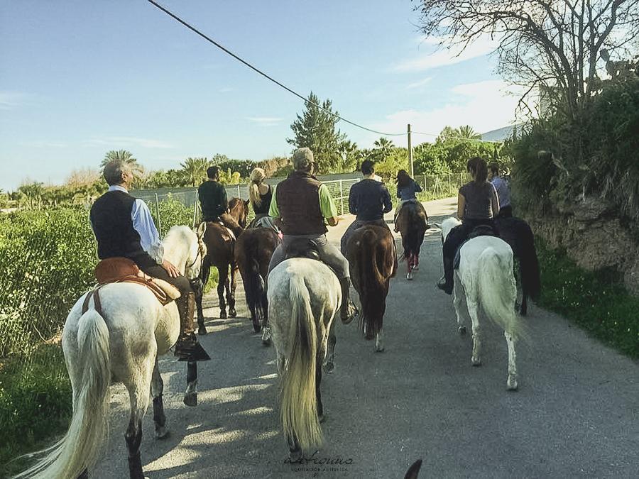 Paseos y rutas por el campo